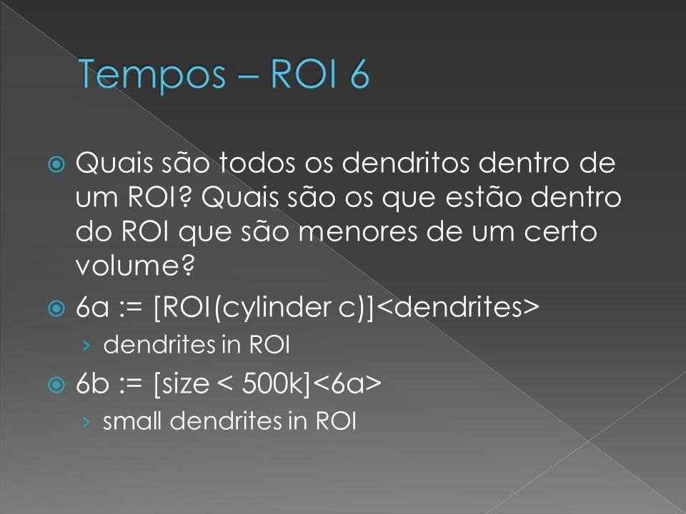 Tempos – ROI 6 Quais são todos os dendritos dentro de um ROI Quais são os que estão dentro do ROI que são menores de um certo volume