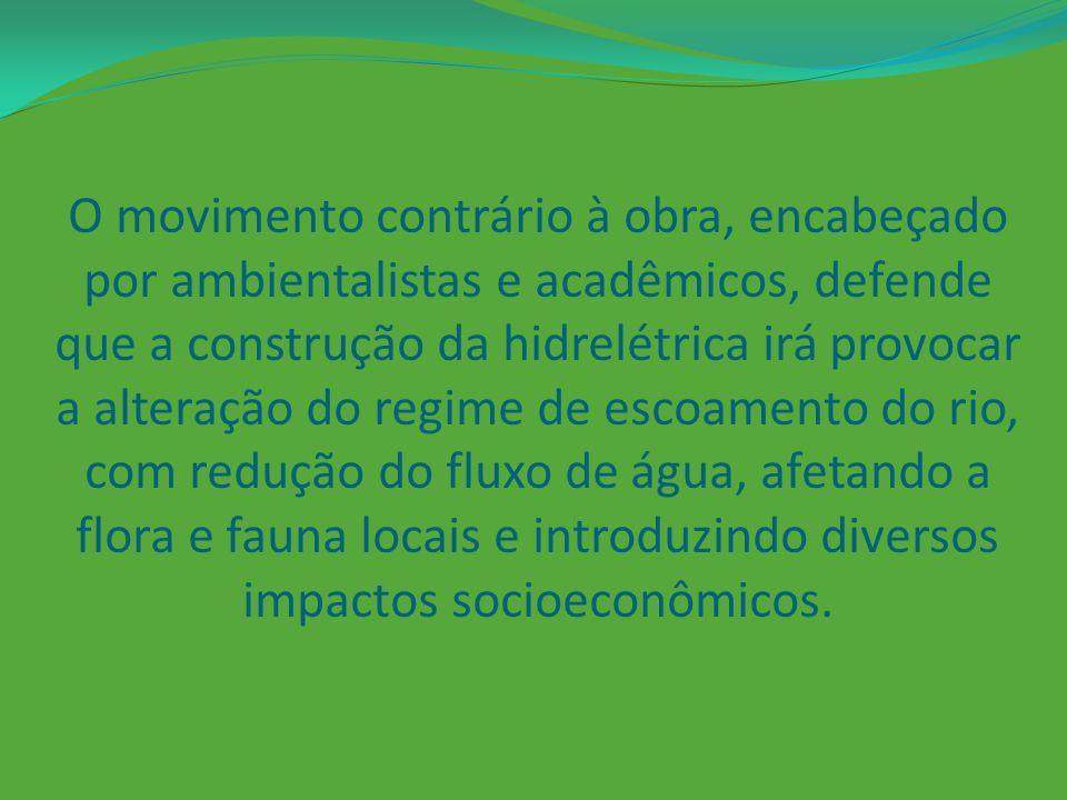 O movimento contrário à obra, encabeçado por ambientalistas e acadêmicos, defende que a construção da hidrelétrica irá provocar a alteração do regime de escoamento do rio, com redução do fluxo de água, afetando a flora e fauna locais e introduzindo diversos impactos socioeconômicos.