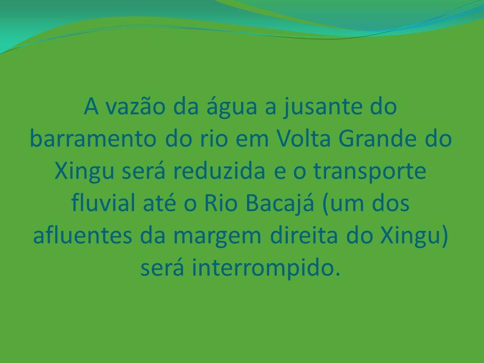 A vazão da água a jusante do barramento do rio em Volta Grande do Xingu será reduzida e o transporte fluvial até o Rio Bacajá (um dos afluentes da margem direita do Xingu) será interrompido.