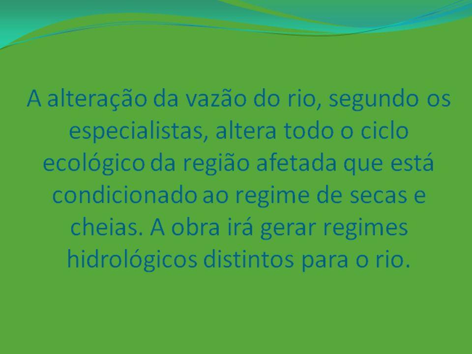 A alteração da vazão do rio, segundo os especialistas, altera todo o ciclo ecológico da região afetada que está condicionado ao regime de secas e cheias.