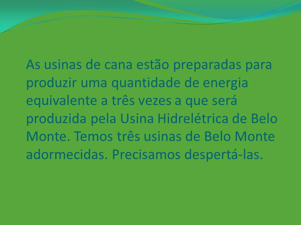 As usinas de cana estão preparadas para produzir uma quantidade de energia equivalente a três vezes a que será produzida pela Usina Hidrelétrica de Belo Monte.