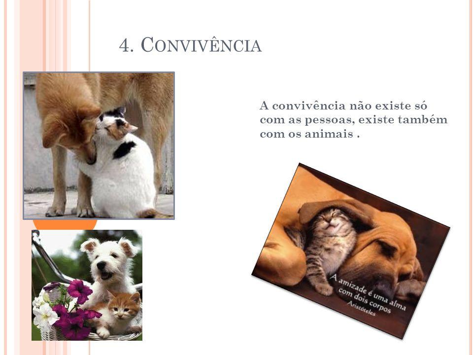 4. Convivência A convivência não existe só com as pessoas, existe também com os animais .