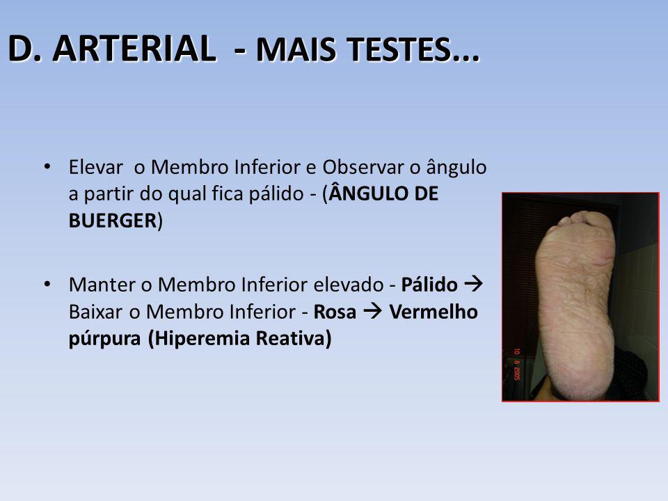 D. ARTERIAL - MAIS TESTES...