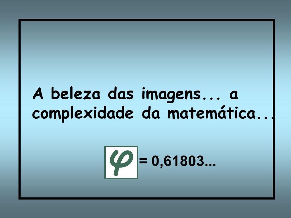 A beleza das imagens... a complexidade da matemática...