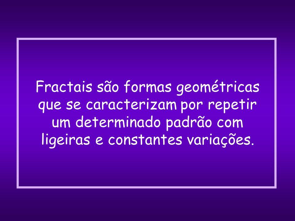 Fractais são formas geométricas que se caracterizam por repetir um determinado padrão com ligeiras e constantes variações.