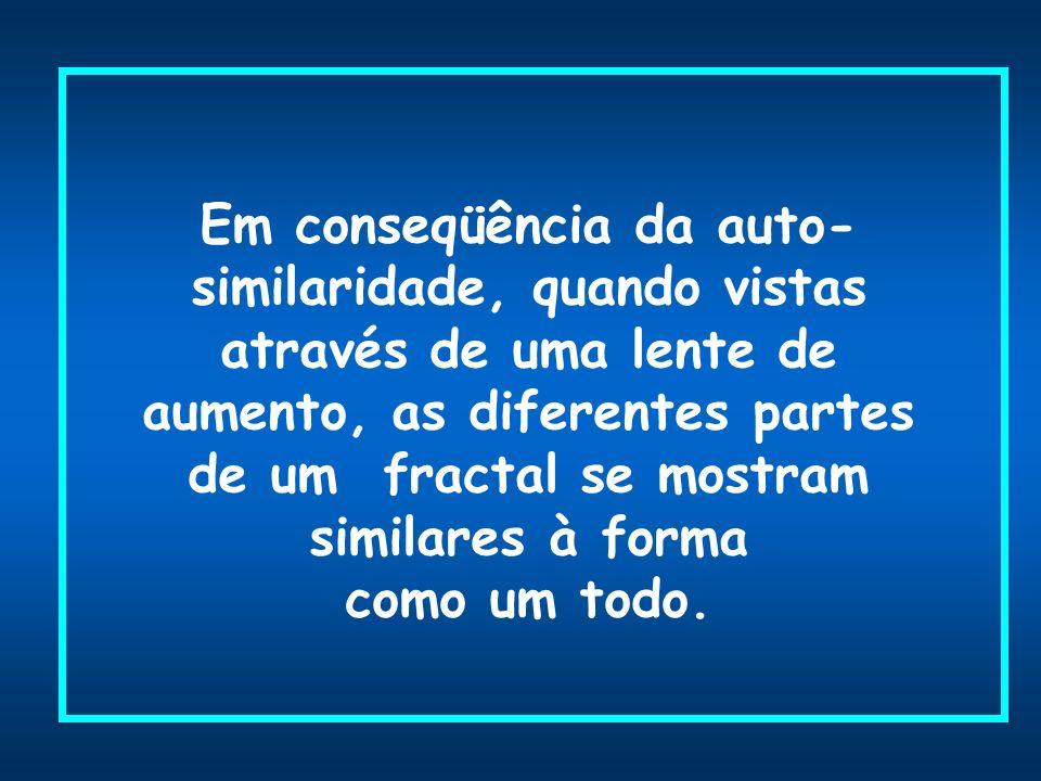 Em conseqüência da auto-similaridade, quando vistas através de uma lente de aumento, as diferentes partes de um fractal se mostram similares à forma como um todo.