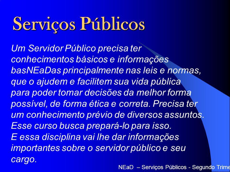 Serviços Públicos Um Servidor Público precisa ter