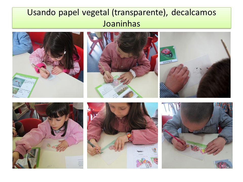 Usando papel vegetal (transparente), decalcamos Joaninhas