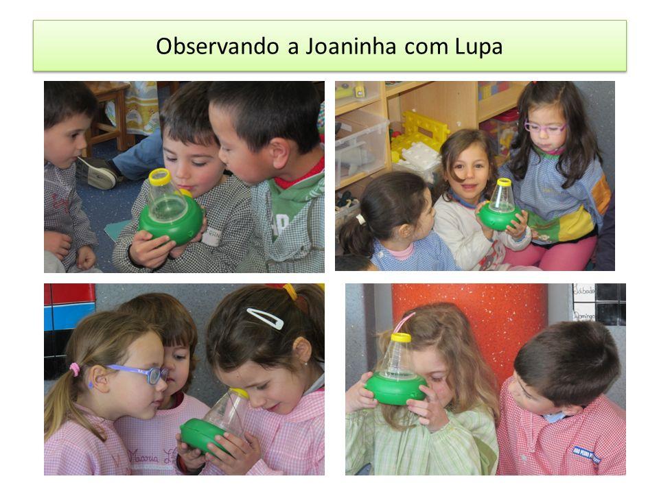 Observando a Joaninha com Lupa