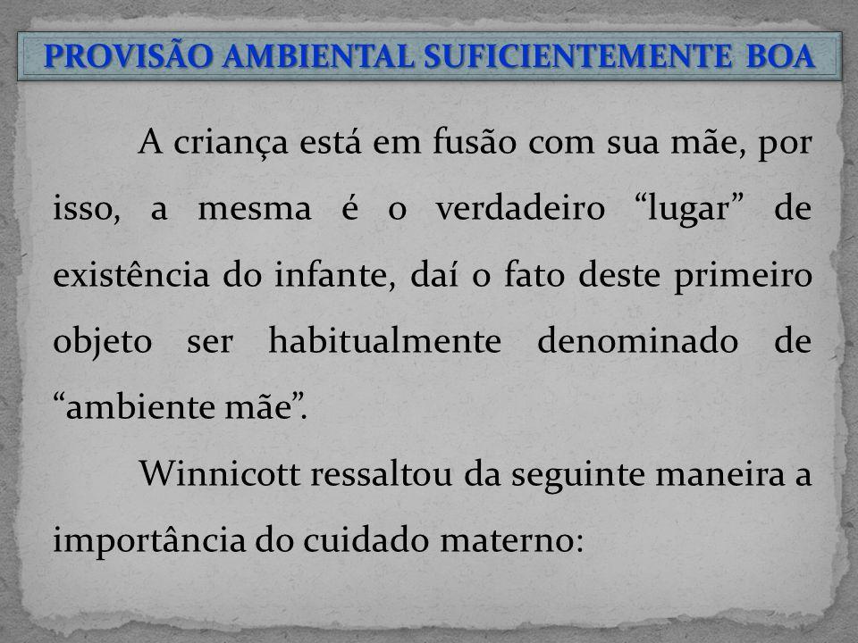 PROVISÃO AMBIENTAL SUFICIENTEMENTE BOA