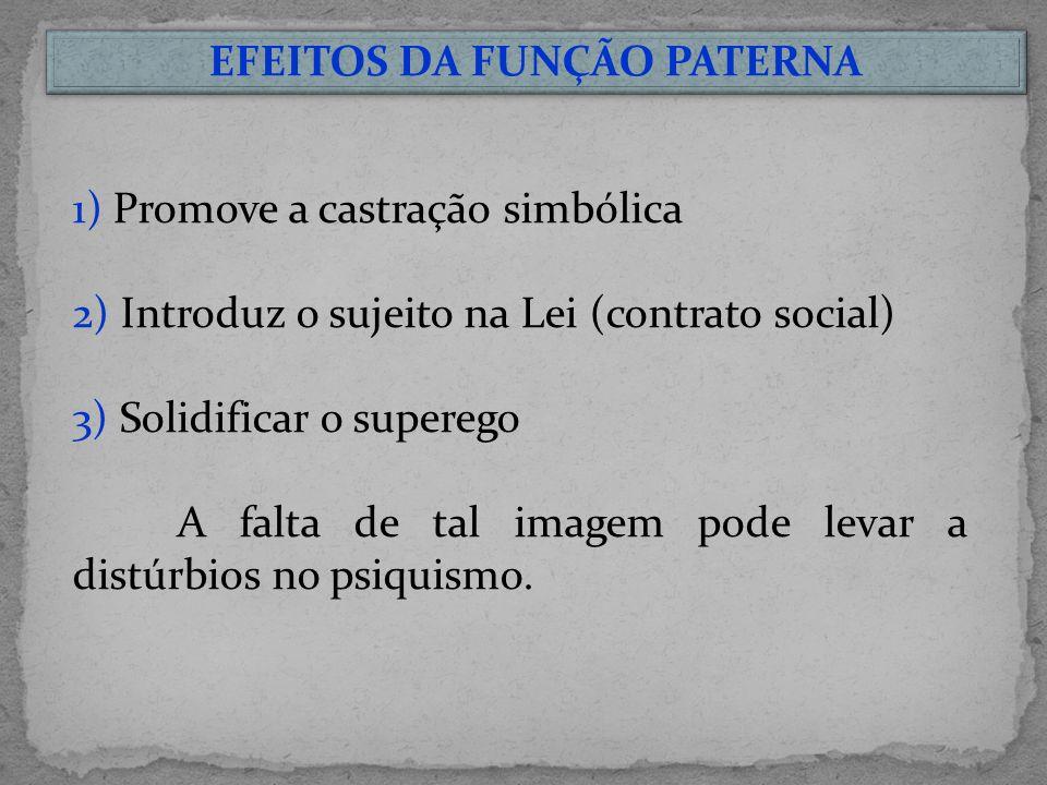 EFEITOS DA FUNÇÃO PATERNA