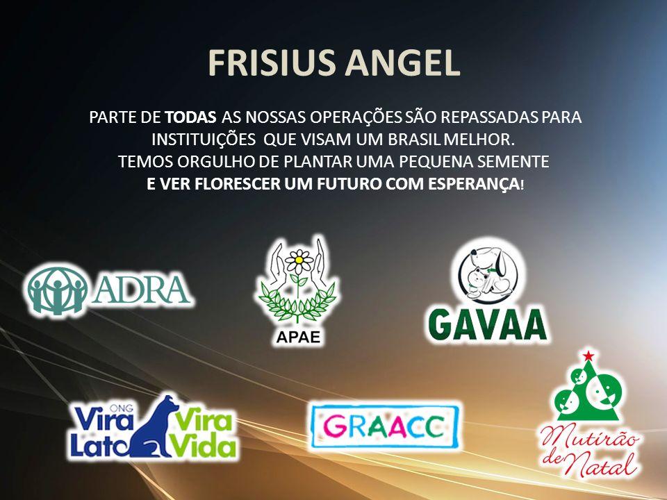 FRISIUS ANGEL INSTITUIÇÕES QUE VISAM UM BRASIL MELHOR.