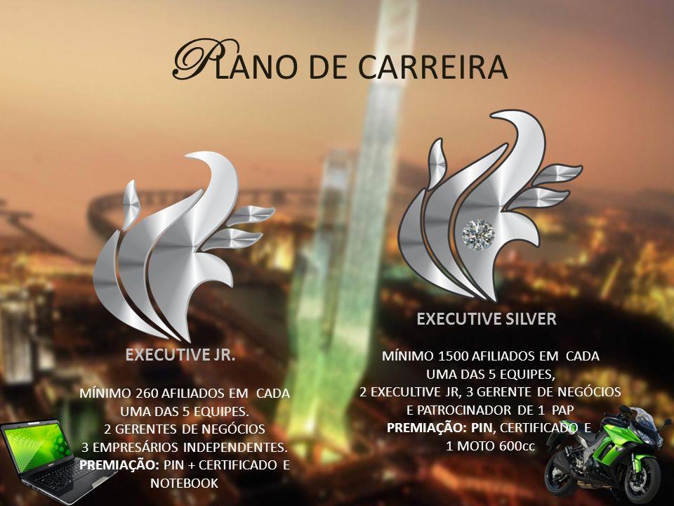 PLANO DE CARREIRA EXECUTIVE SILVER EXECUTIVE JR.