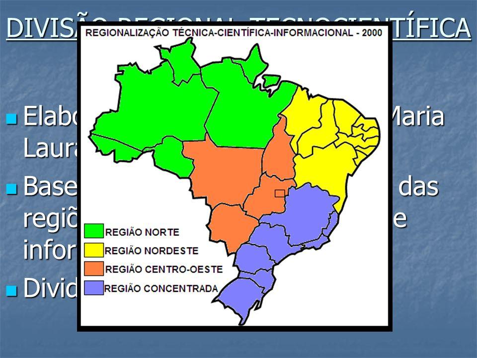 DIVISÃO REGIONAL TECNOCIENTÍFICA E INFORMACIONAL