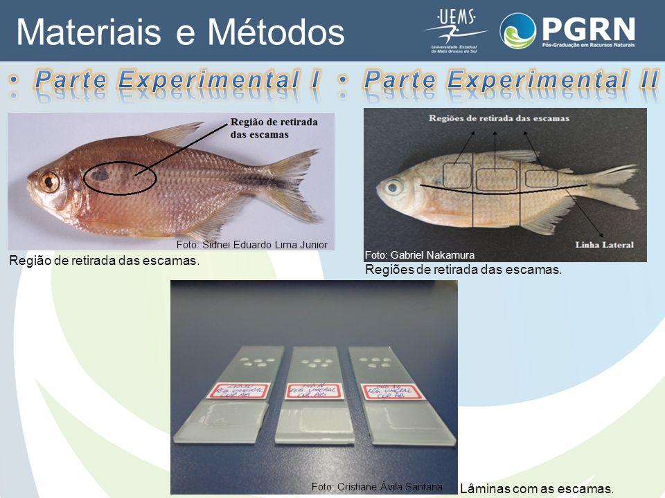 Materiais e Métodos Parte Experimental I Parte Experimental II