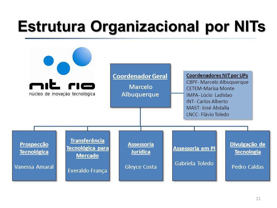 Estrutura Organizacional por NITs