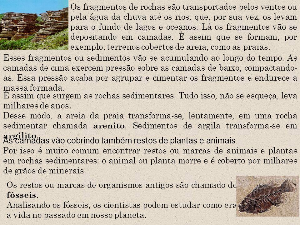Os fragmentos de rochas são transportados pelos ventos ou pela água da chuva até os rios, que, por sua vez, os levam para o fundo de lagos e oceanos. Lá os fragmentos vão se depositando em camadas. É assim que se formam, por exemplo, terrenos cobertos de areia, como as praias.