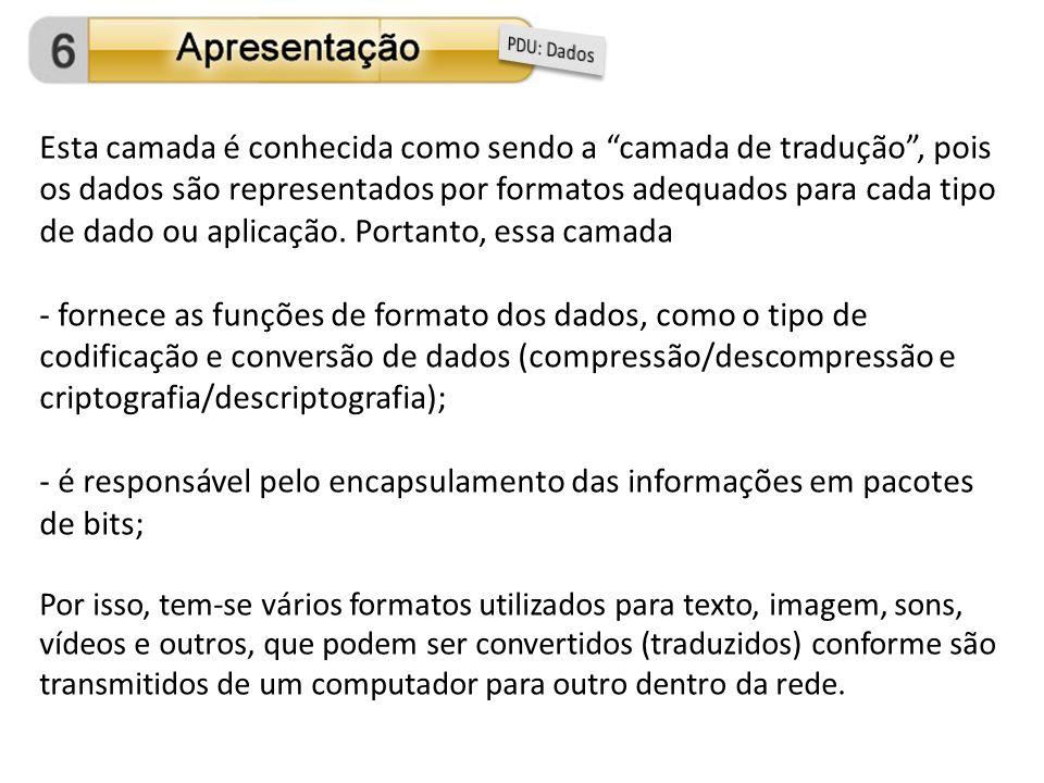é responsável pelo encapsulamento das informações em pacotes de bits;