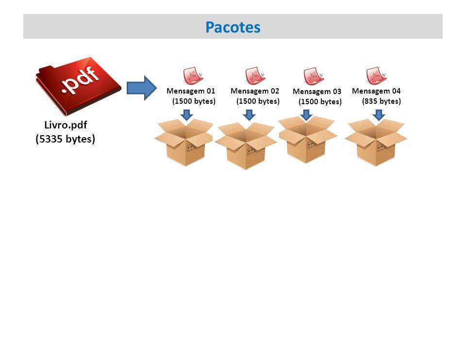 Pacotes Livro.pdf (5335 bytes) Mensagem 01 (1500 bytes) Mensagem 02