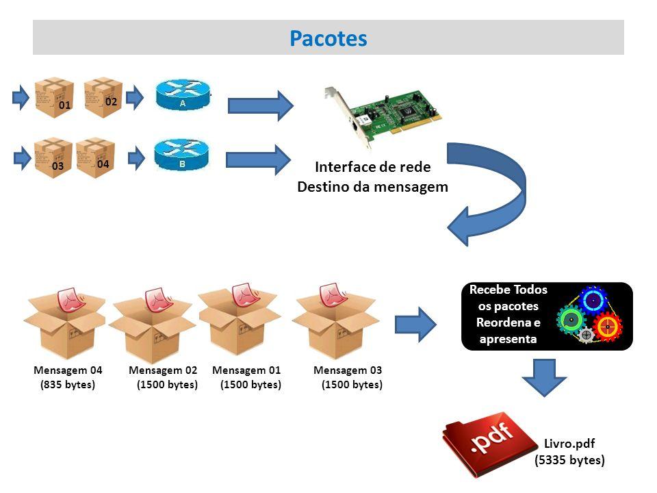 Pacotes Interface de rede Destino da mensagem Recebe Todos os pacotes