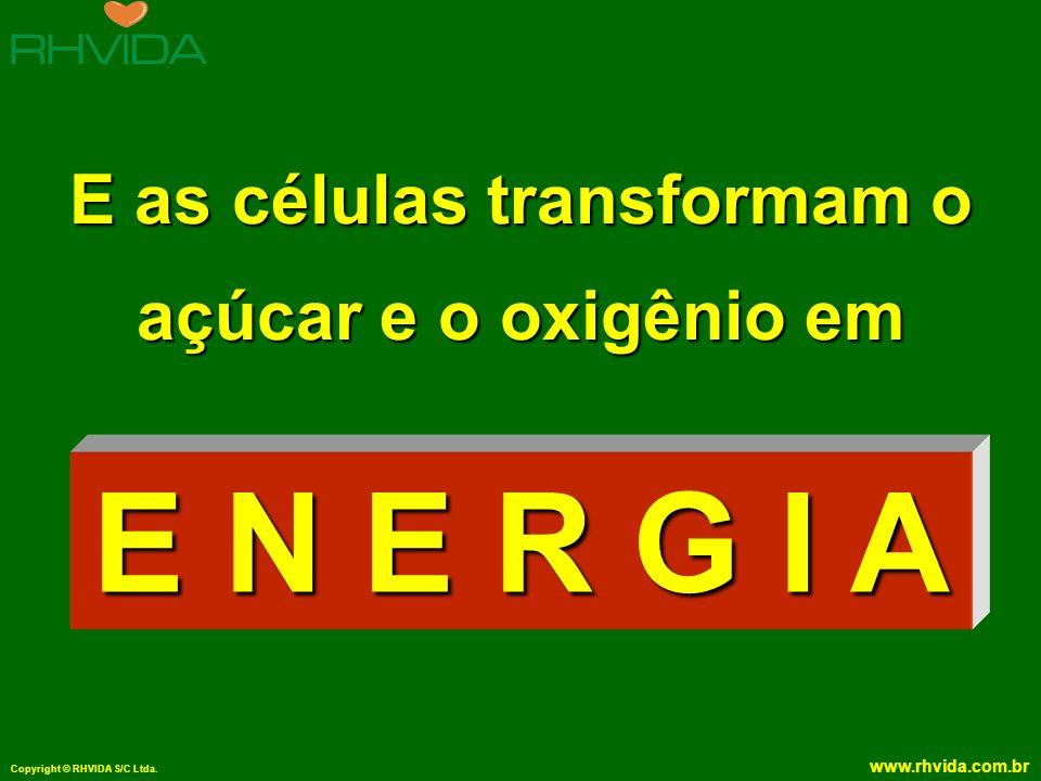 E as células transformam o açúcar e o oxigênio em