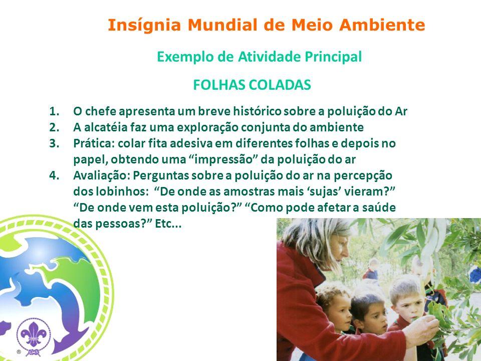 Insígnia Mundial de Meio Ambiente Exemplo de Atividade Principal