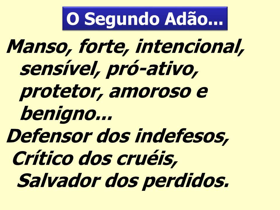 Defensor dos indefesos, Crítico dos cruéis, Salvador dos perdidos.