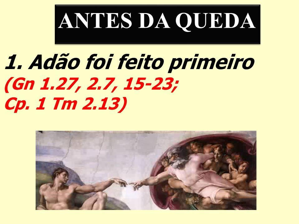 ANTES DA QUEDA 1. Adão foi feito primeiro (Gn 1.27, 2.7, 15-23;