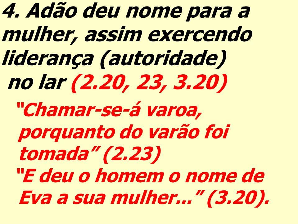 mulher, assim exercendo liderança (autoridade) no lar (2.20, 23, 3.20)