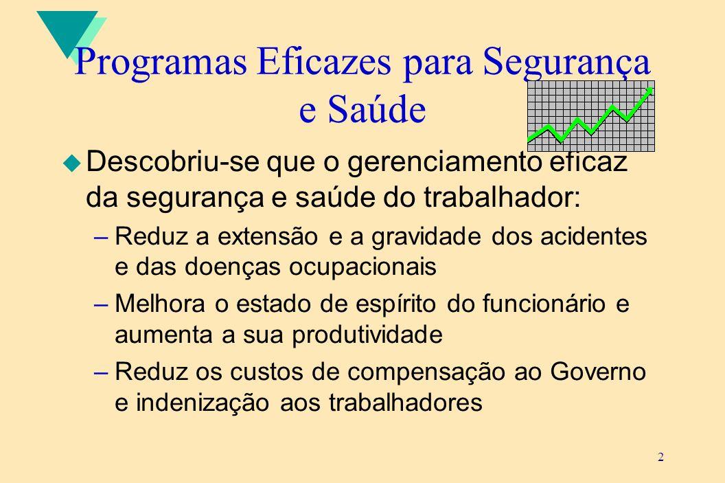 Programas Eficazes para Segurança e Saúde