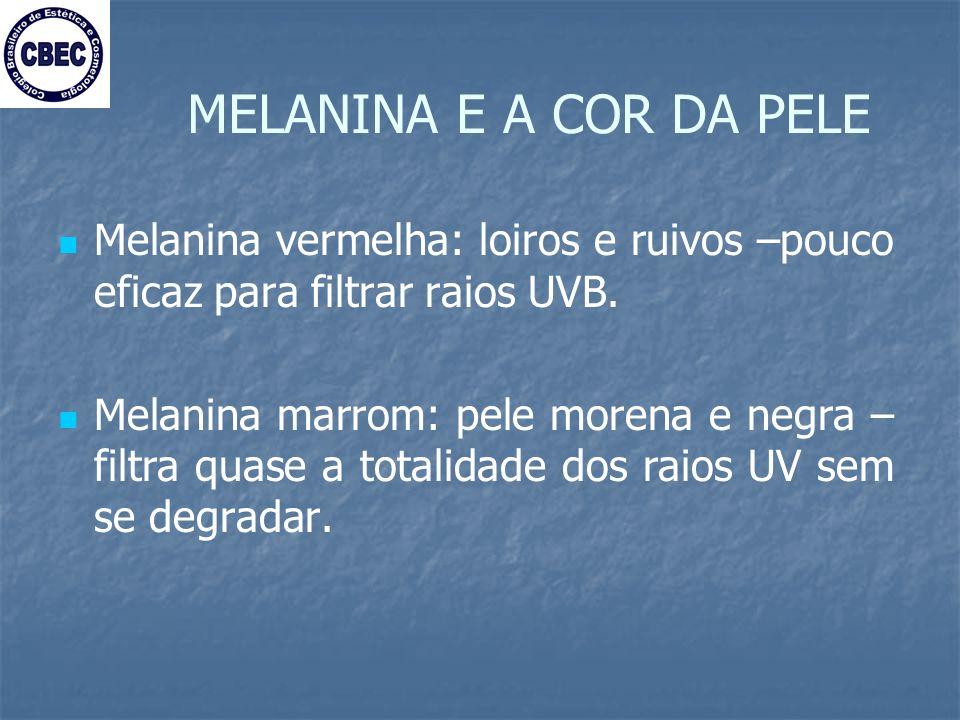 MELANINA E A COR DA PELE Melanina vermelha: loiros e ruivos –pouco eficaz para filtrar raios UVB.