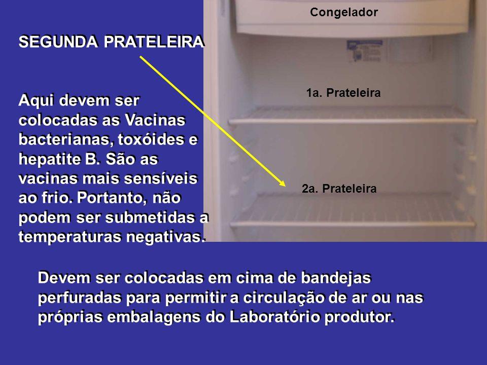 Congelador SEGUNDA PRATELEIRA.