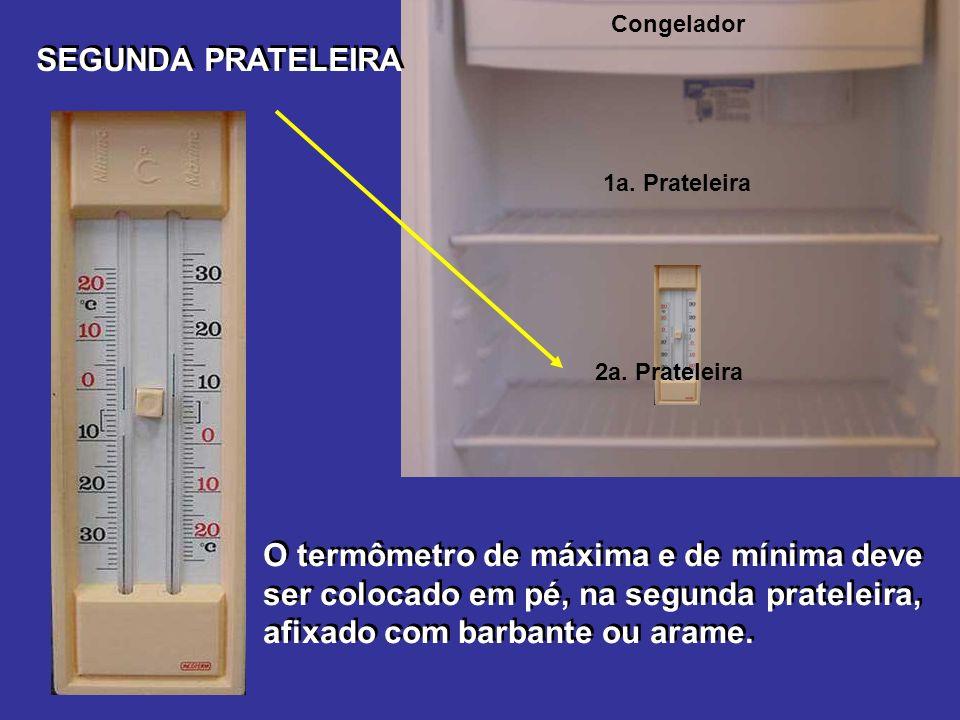 Congelador SEGUNDA PRATELEIRA. 1a. Prateleira. 2a. Prateleira.