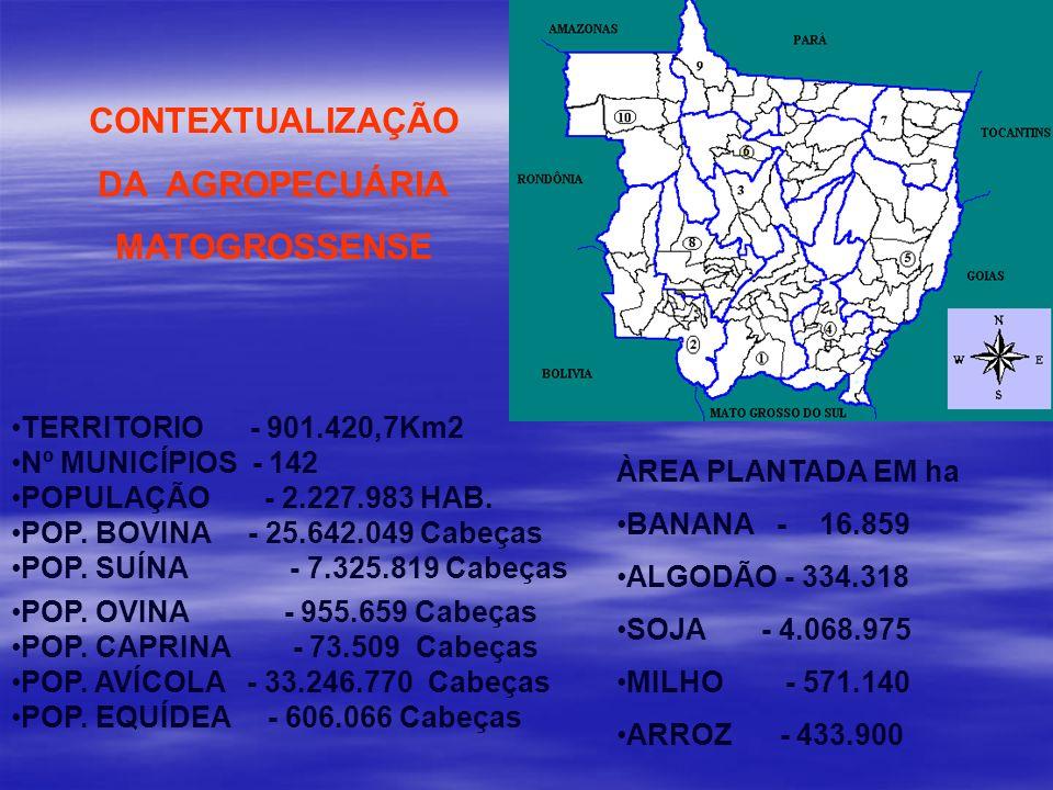 CONTEXTUALIZAÇÃO DA AGROPECUÁRIA MATOGROSSENSE