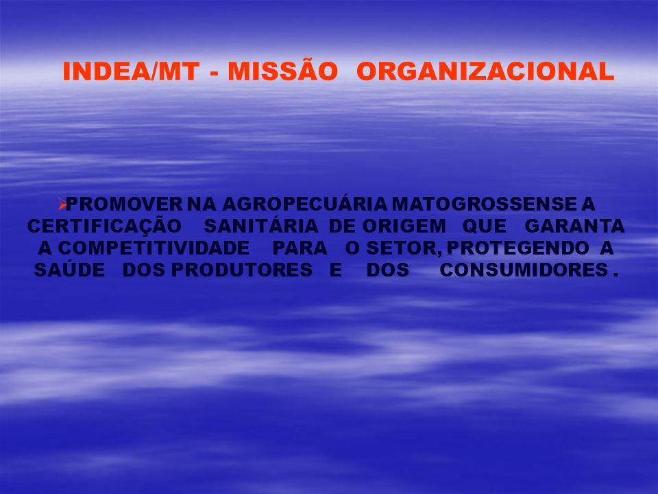INDEA/MT - MISSÃO ORGANIZACIONAL