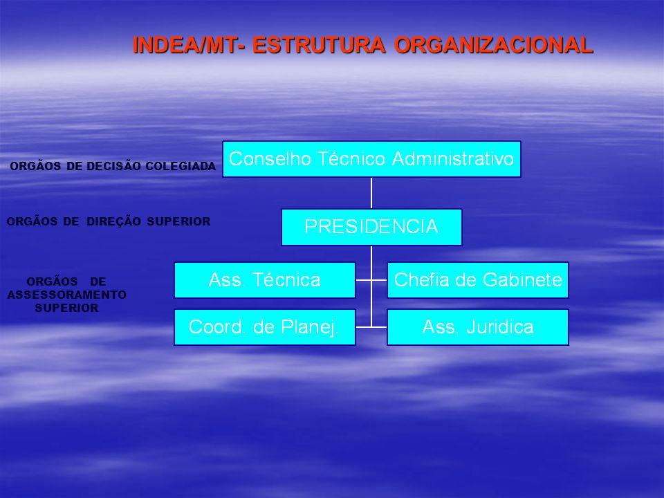 INDEA/MT- ESTRUTURA ORGANIZACIONAL