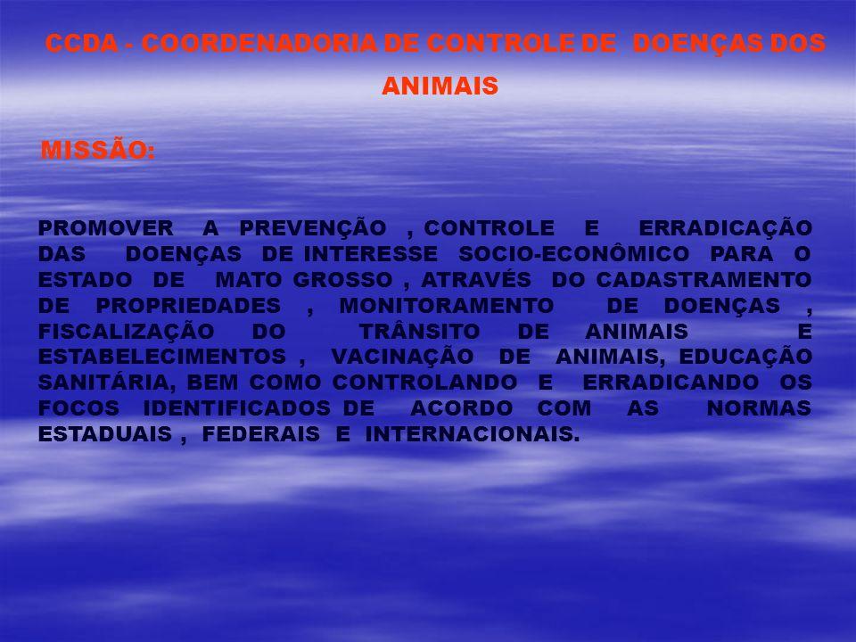 CCDA - COORDENADORIA DE CONTROLE DE DOENÇAS DOS