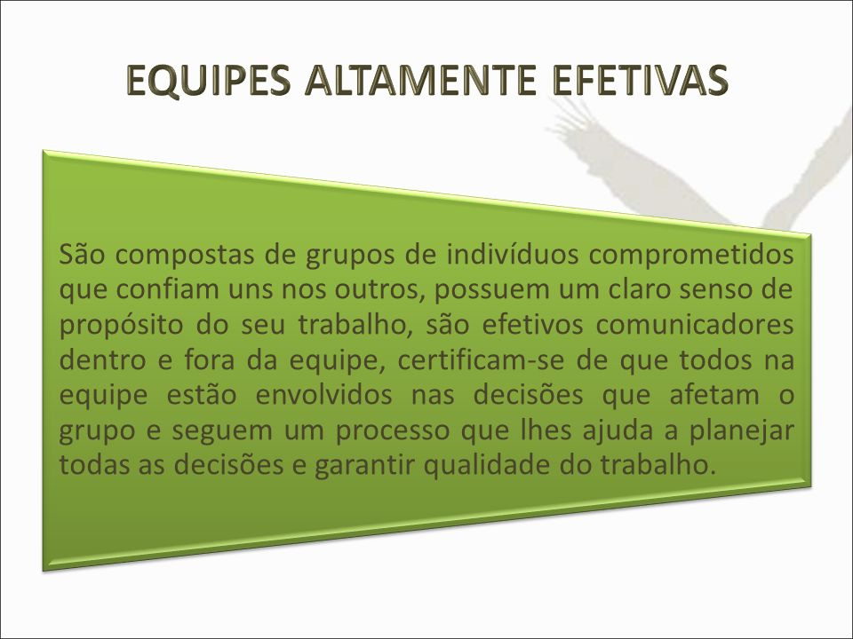 EQUIPES ALTAMENTE EFETIVAS