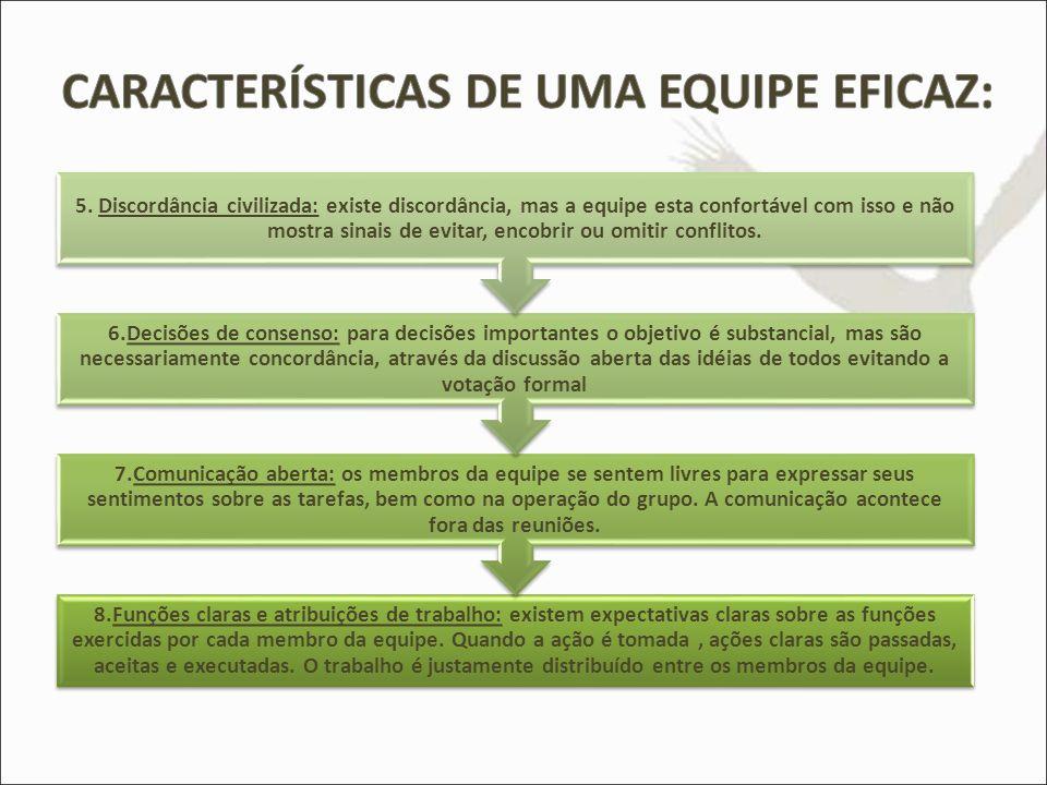CARACTERÍSTICAS DE UMA EQUIPE EFICAZ: