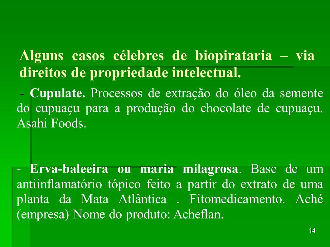 - Cupulate. Processos de extração do óleo da semente do cupuaçu para a produção do chocolate de cupuaçu. Asahi Foods.