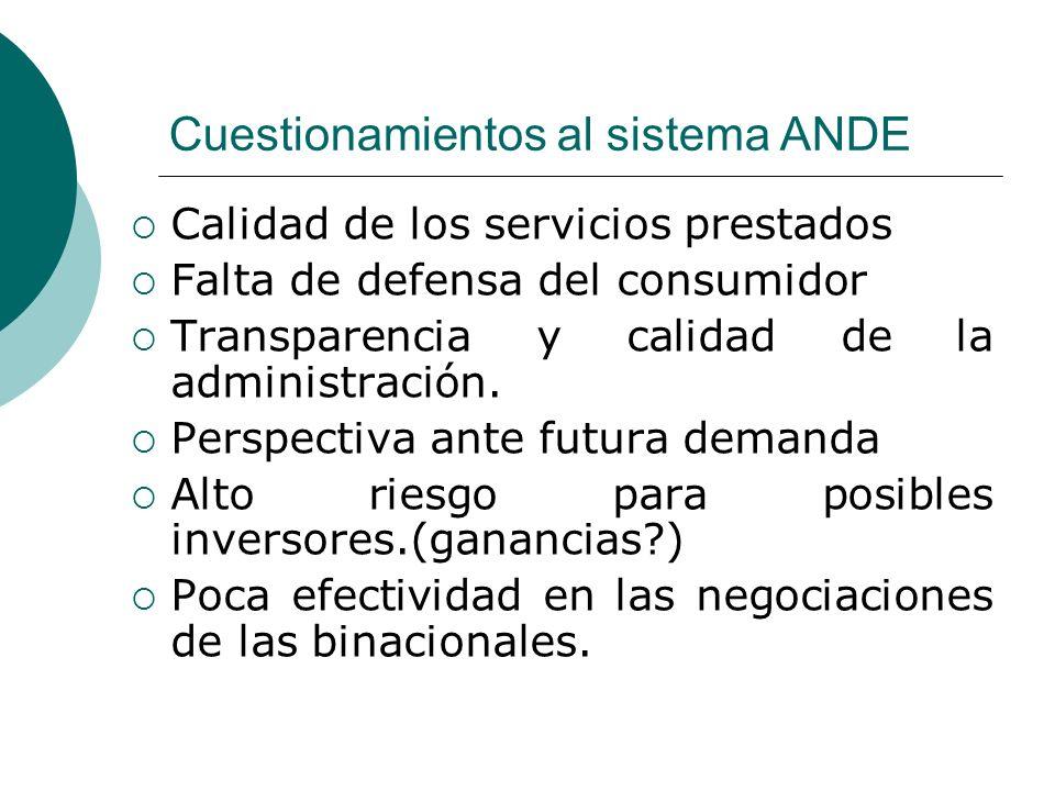Cuestionamientos al sistema ANDE