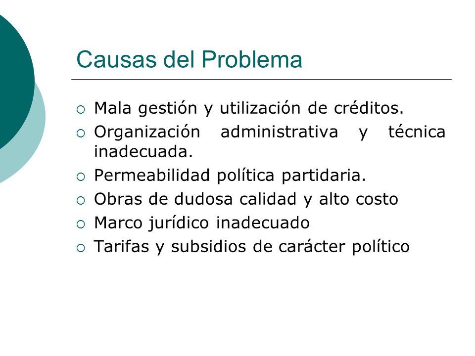 Causas del Problema Mala gestión y utilización de créditos.