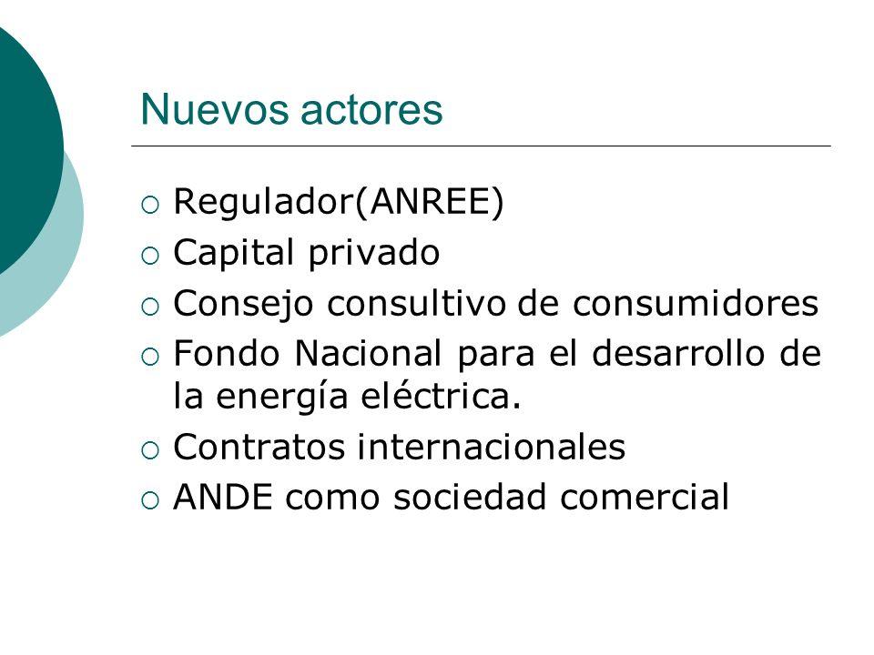 Nuevos actores Regulador(ANREE) Capital privado