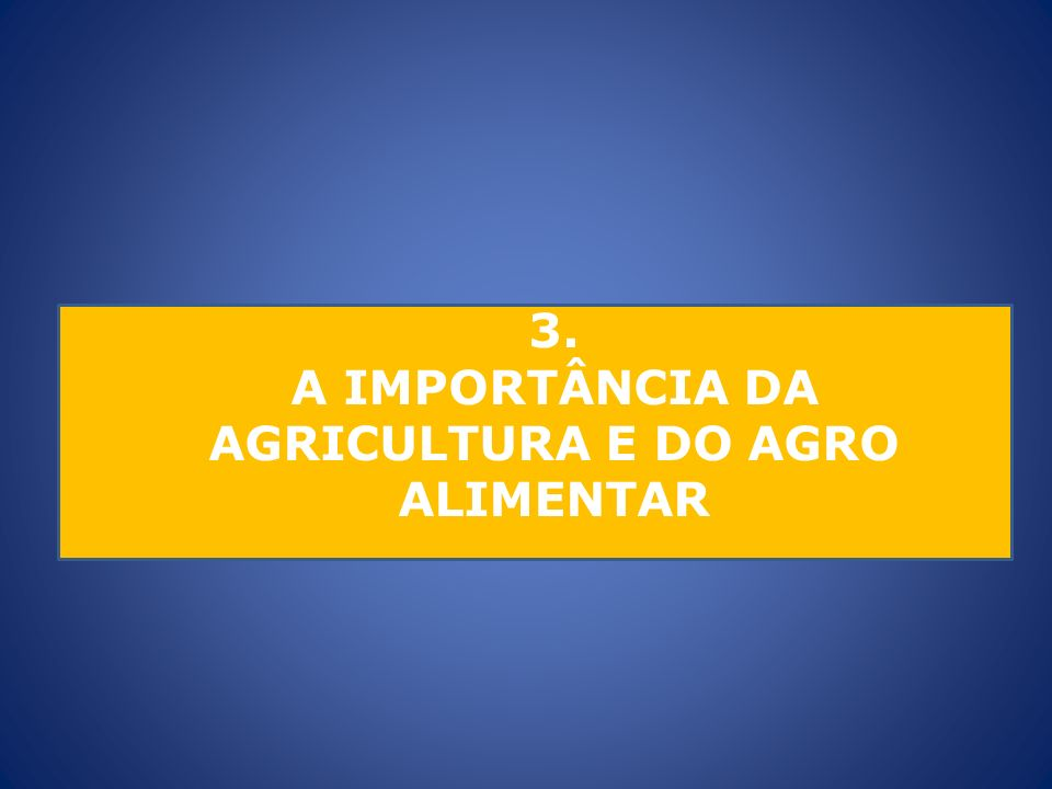 A IMPORTÂNCIA DA AGRICULTURA E DO AGRO ALIMENTAR