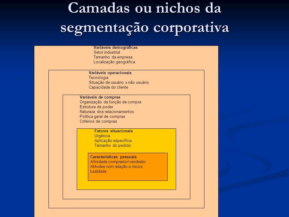 Camadas ou nichos da segmentação corporativa