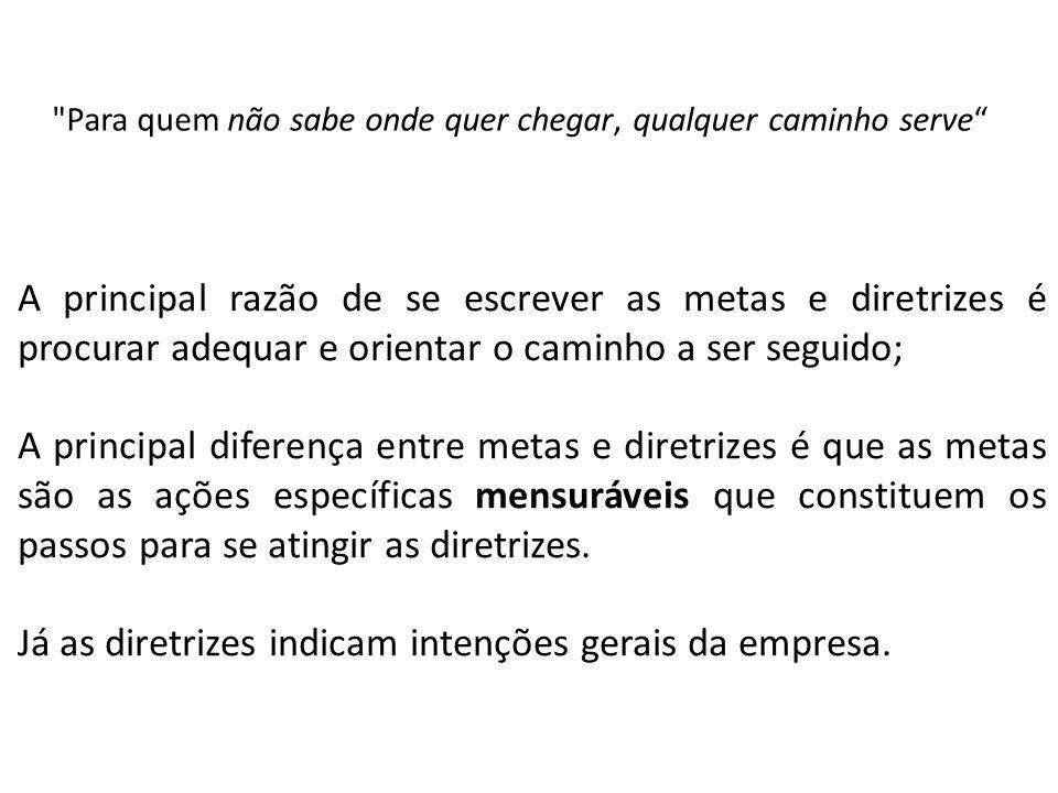 Já as diretrizes indicam intenções gerais da empresa.