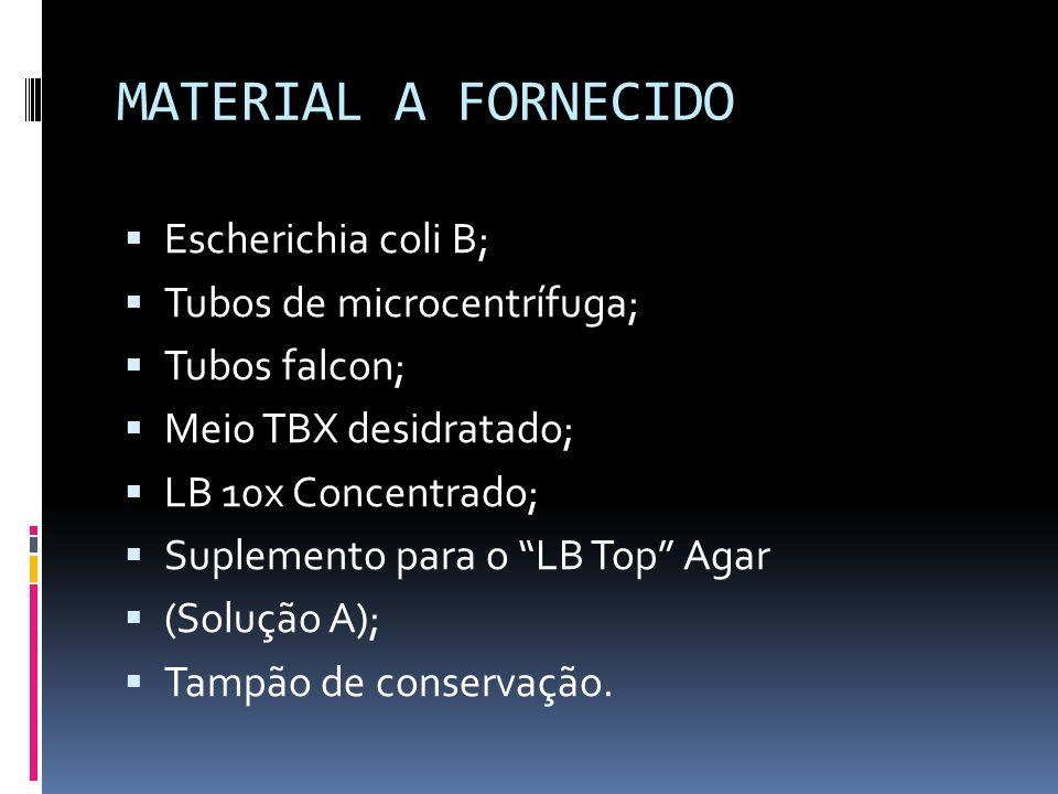 MATERIAL A FORNECIDO Escherichia coli B; Tubos de microcentrífuga;