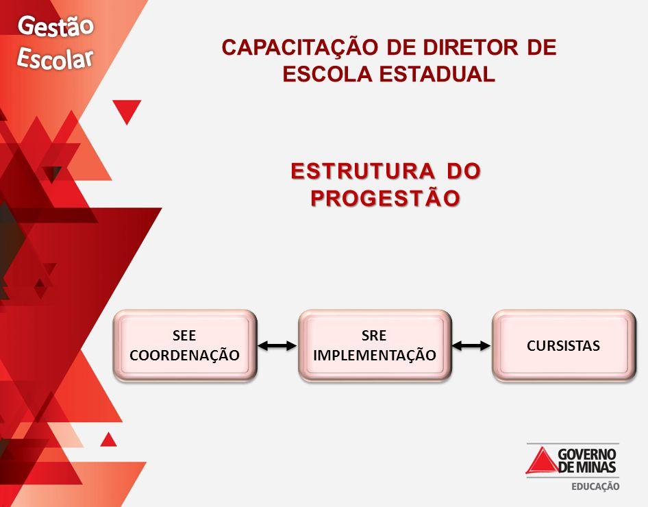 Capacitação de Diretor de Estrutura do PROGESTÃO