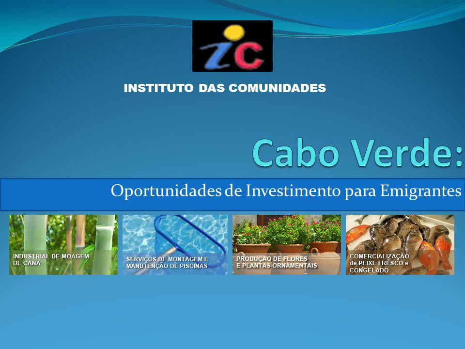 Oportunidades de Investimento para Emigrantes