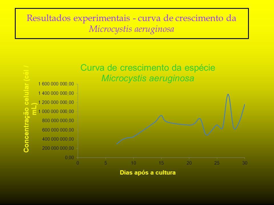Resultados experimentais - curva de crescimento da Microcystis aeruginosa